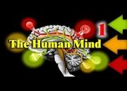 Личность и разум в лабиринтах мозга