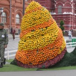 москва 011