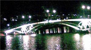 мост в царицыно ночью